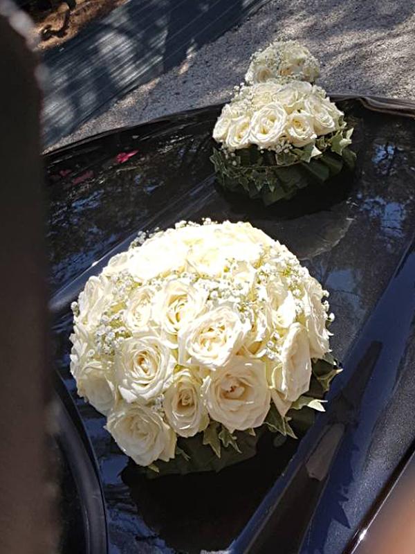Fleur En&70.jpg039;Vie Img9 70