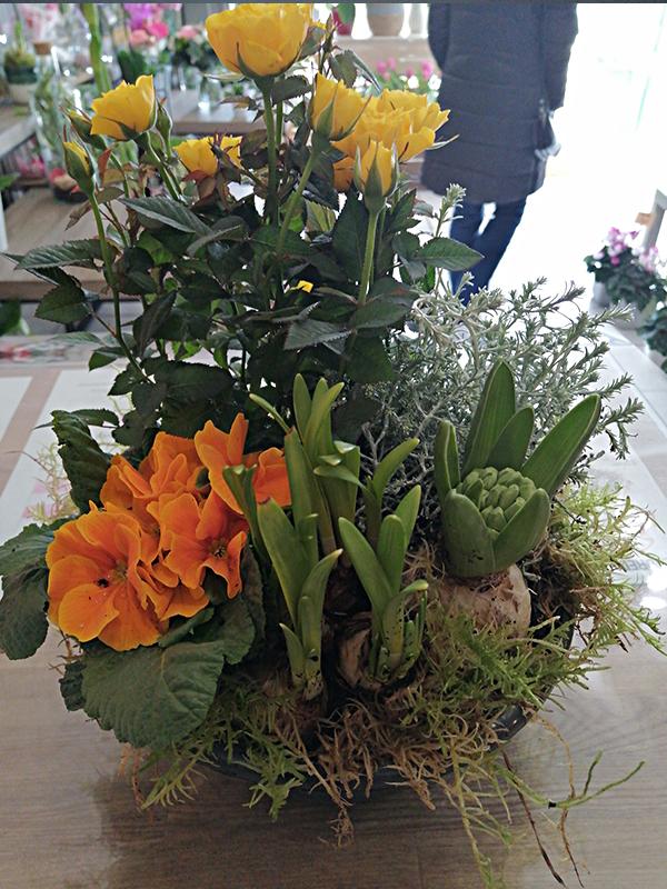 Fleur En&81.jpg039;Vie Img20 81