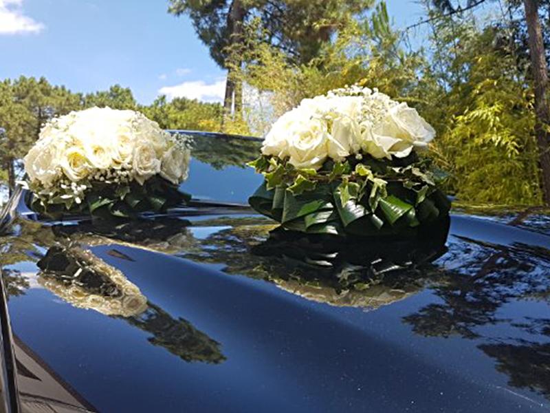 Fleur En&87.jpg039;Vie Img3 87